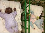 ofoto nursery